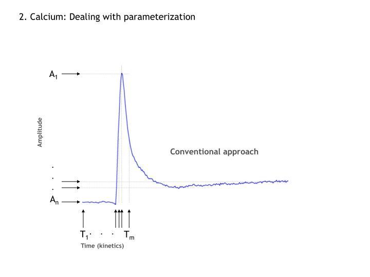 2. Calcium: Dealing with parameterization