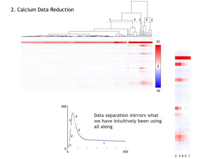 2. Calcium Data Reduction