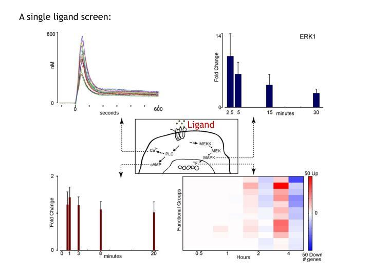 A single ligand screen: