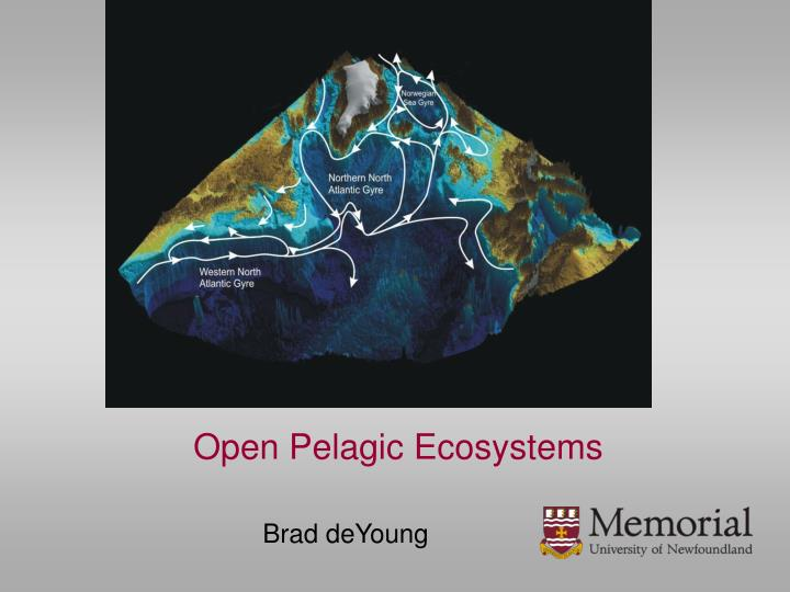 Open Pelagic Ecosystems