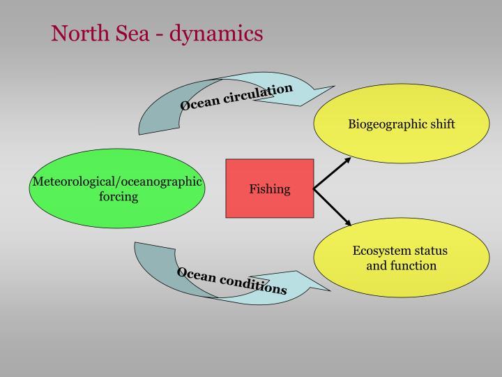 North Sea - dynamics