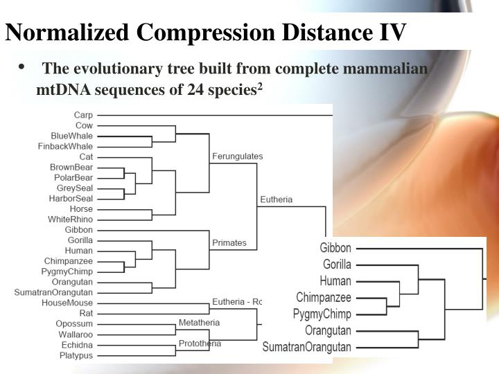 Normalized Compression Distance IV