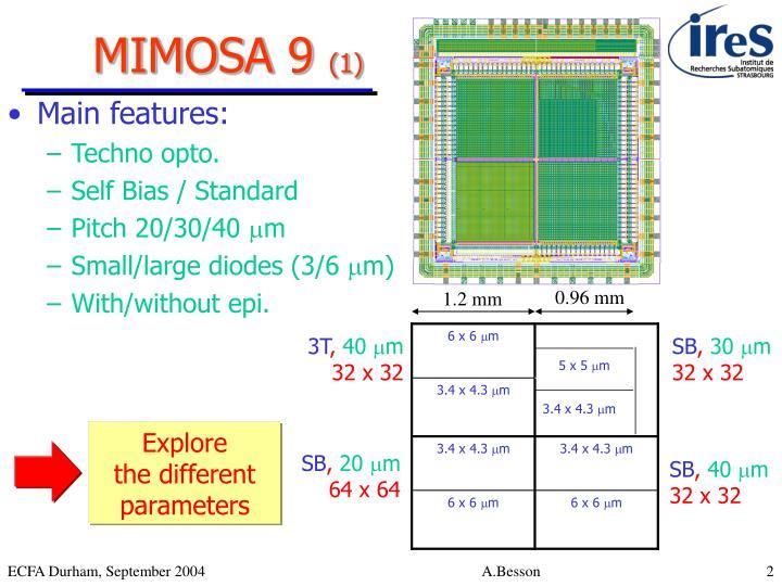 MIMOSA 9