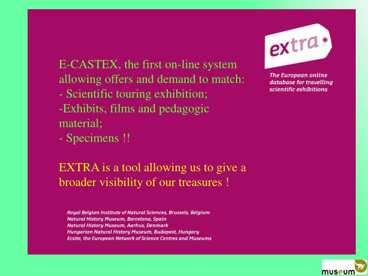 E-CASTEX, the first on-line system allowing offers and demand to match: