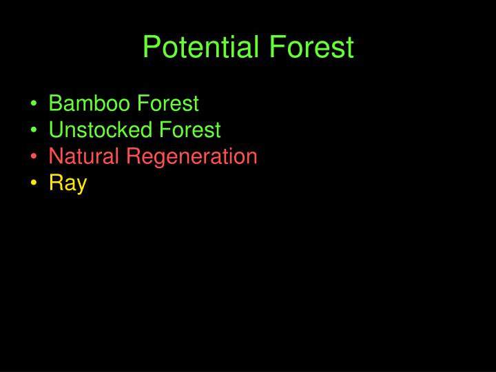 Potential Forest