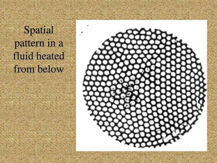 Spatial pattern in a fluid heated from below