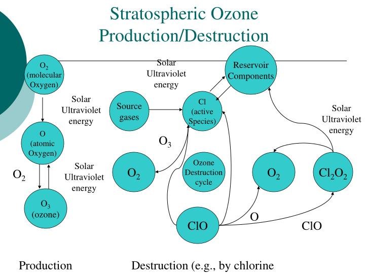 Stratospheric Ozone Production/Destruction