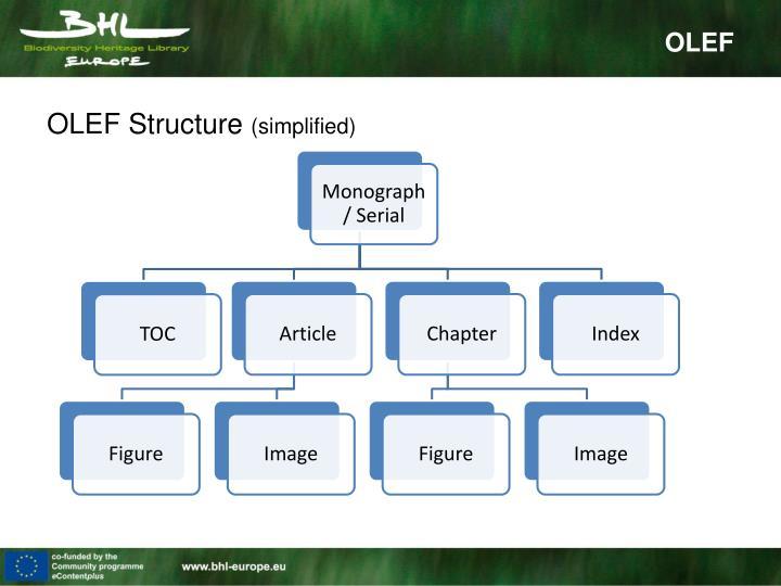 OLEF Structure