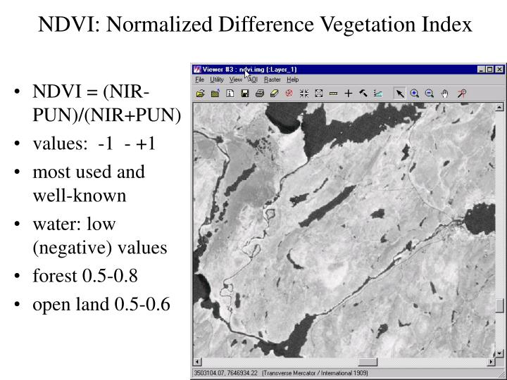 NDVI: Normalized Difference Vegetation Index