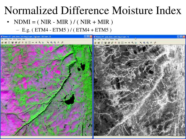 Normalized Difference Moisture Index