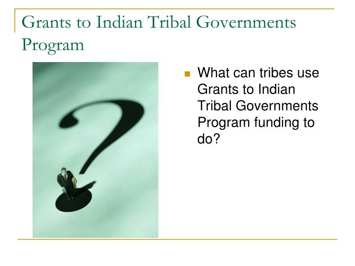 Grants to Indian Tribal Governments Program