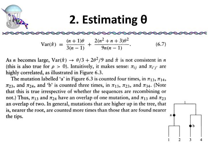 2. Estimating