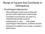 recap of causes that contribute to delinquency3