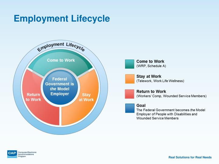 Employment Lifecycle