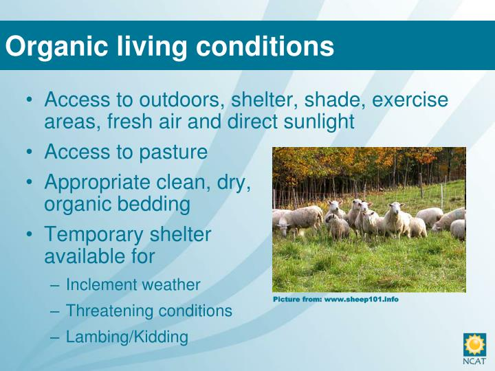 Organic living conditions