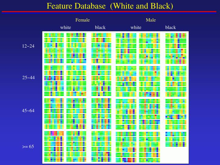 Feature Database  (White and Black)