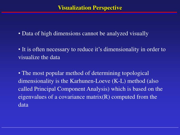 Visualization Perspective