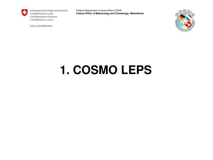 1. COSMO LEPS