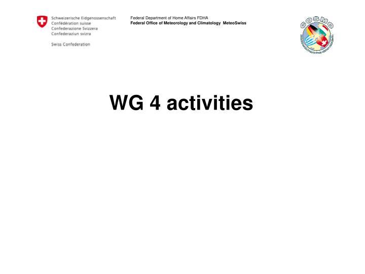WG 4 activities