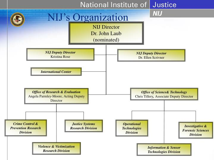 NIJ's Organization