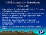 cdm prospects in uzbekistan oil gas