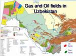 gas and oil fields in uzbekistan