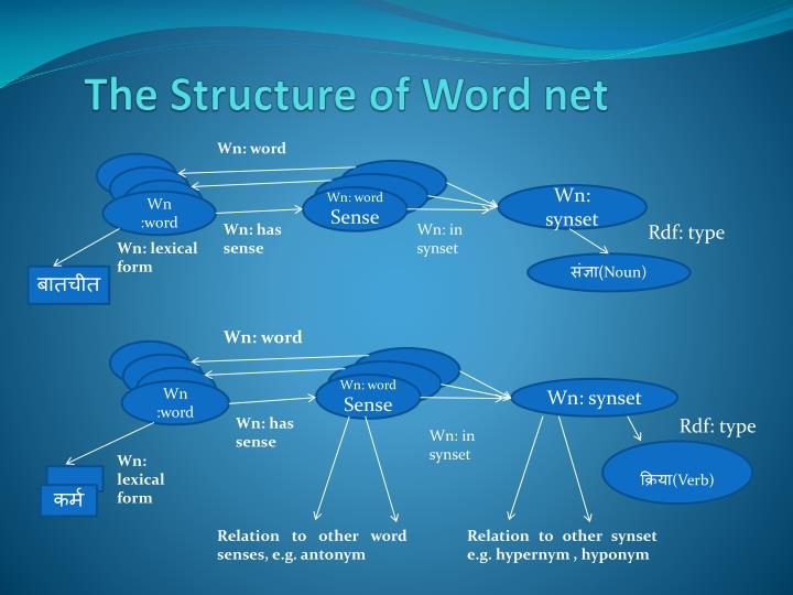 The Structure of Word net