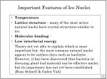 important features of ice nuclei