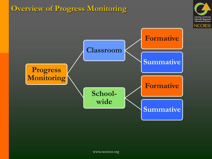 Overview of Progress Monitoring