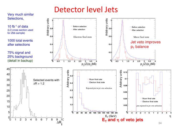 Detector level Jets