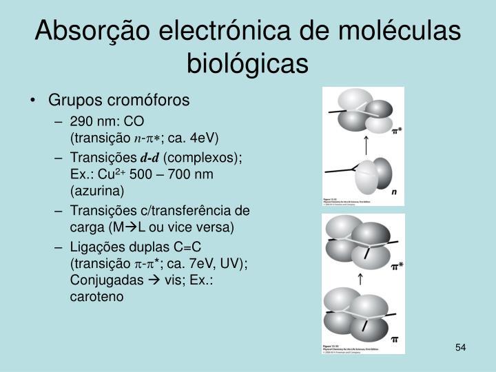 Absorção electrónica de moléculas biológicas