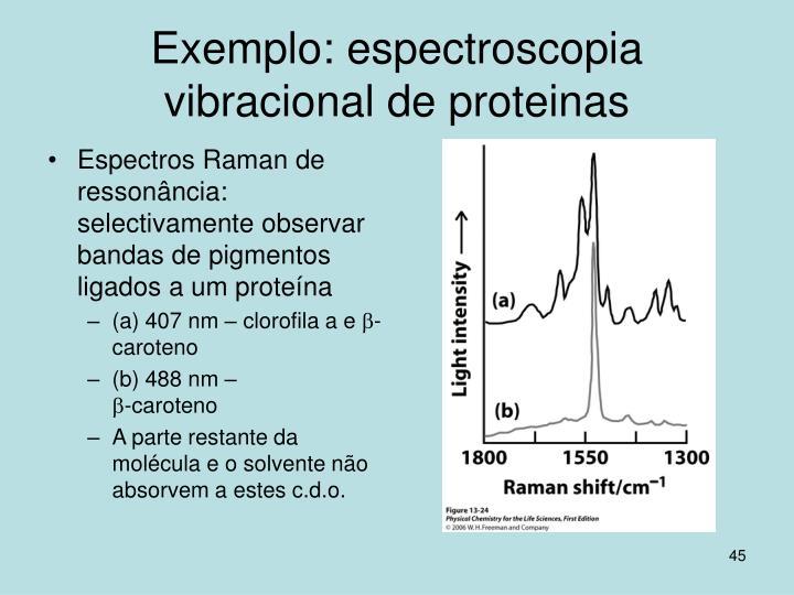 Exemplo: espectroscopia vibracional de proteinas