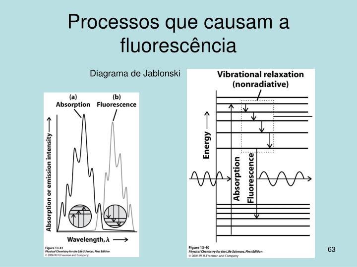 Processos que causam a fluorescência