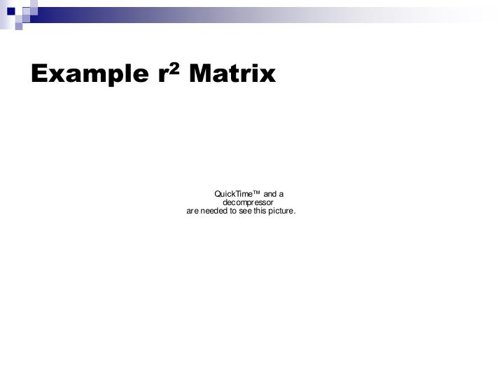 Example r