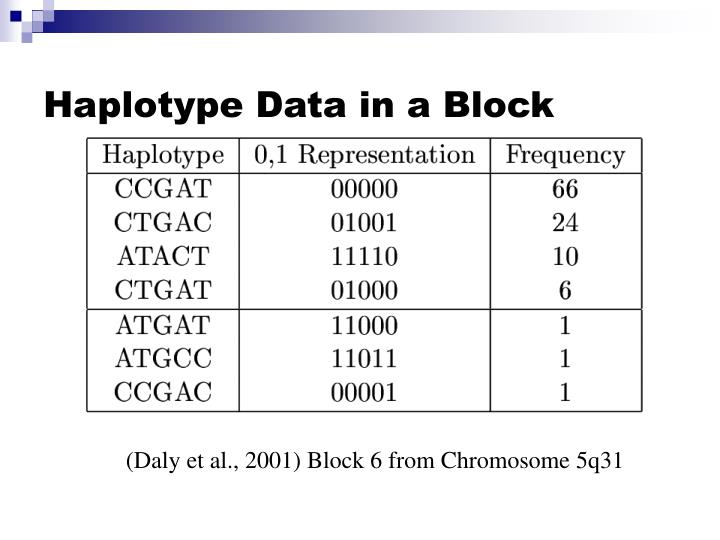 Haplotype Data in a Block
