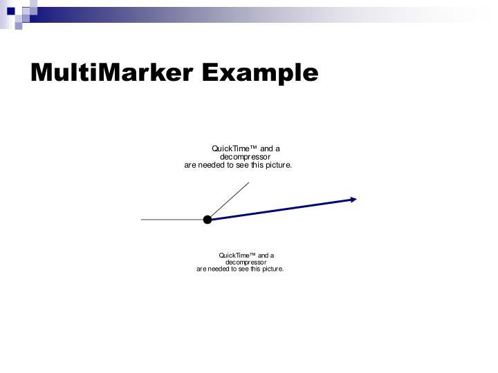 MultiMarker Example