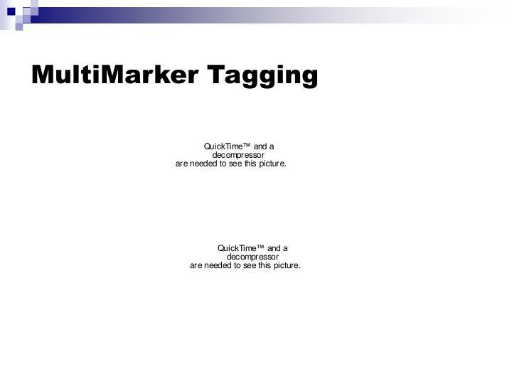 MultiMarker Tagging