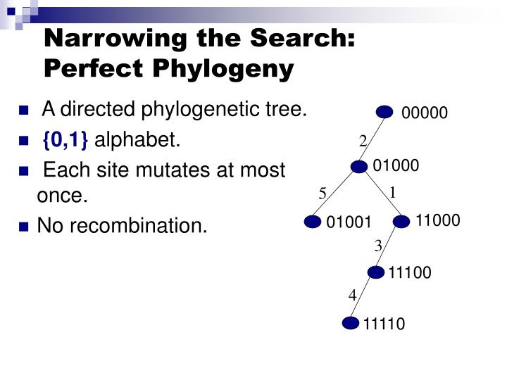 Narrowing the Search: