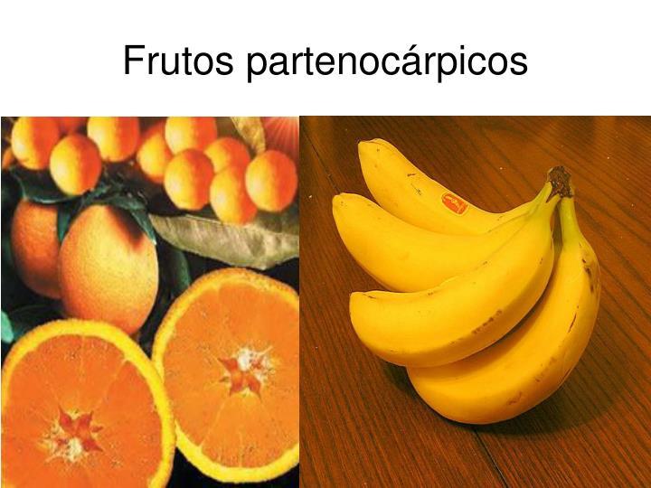 Frutos partenocárpicos