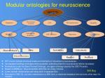 modular ontologies for neuroscience
