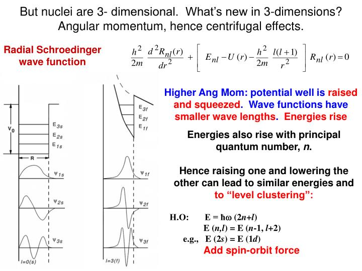 But nuclei are 3- dimensional.  What's new in 3-dimensions?