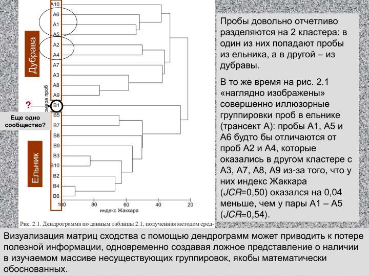 Пробы довольно отчетливо разделяются на 2 кластера: в один из них попадают пробы из ельника, а в другой – из дубравы.