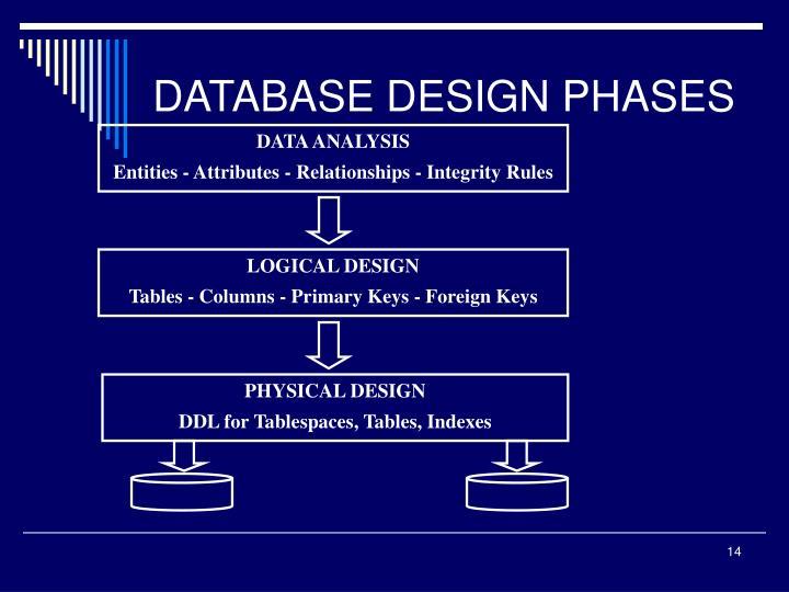 DATABASE DESIGN PHASES