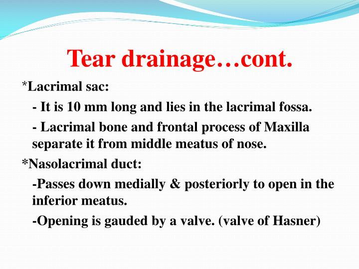 Tear drainage…cont.