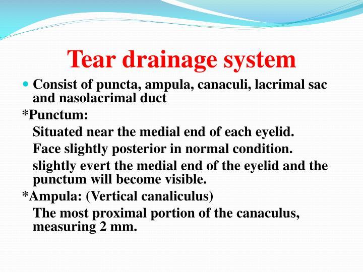 Tear drainage system