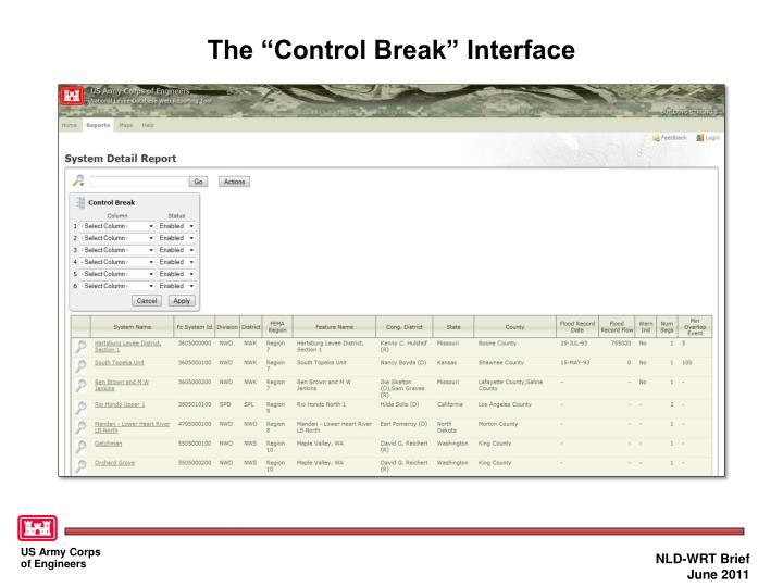 "The ""Control Break"" Interface"