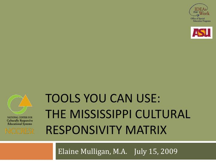 Tools you can use the mississippi cultural responsivity matrix