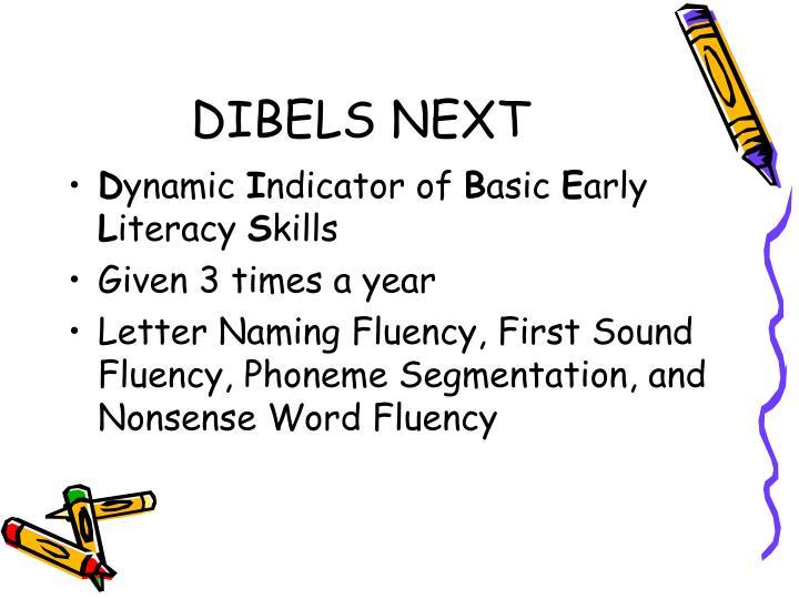 DIBELS NEXT