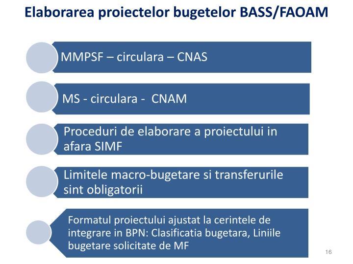 Elaborarea proiectelor bugetelor BASS/FAOAM