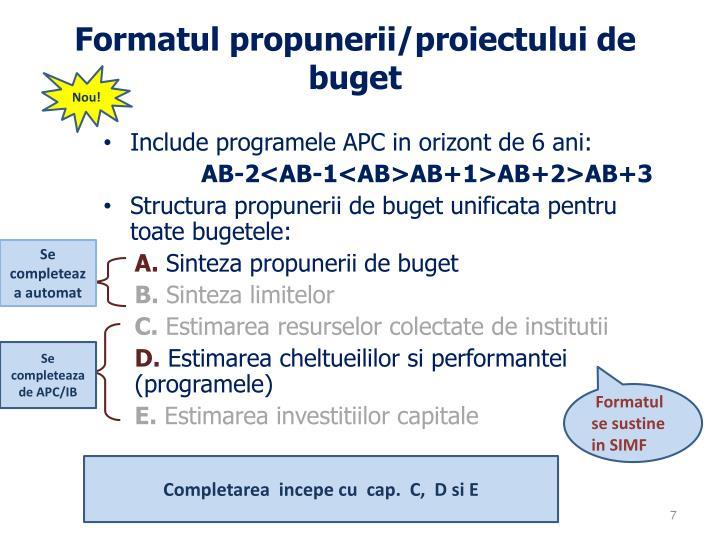 Formatul propunerii/proiectului de buget